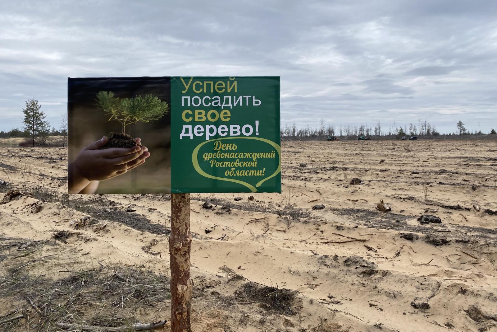В День древонасаждений на Дону высадят 48 тыс. саженцев деревьев и кустарников - фото 1